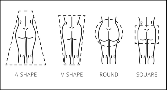A diagram defining the different body types