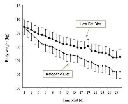 Low-fat vs keto diet on weight loss